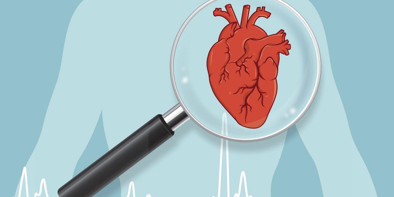 Care sunt factorii de risc pentru bolile cardiovasculare?