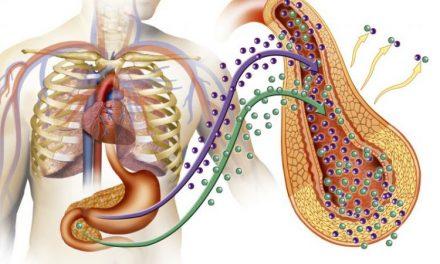 Simpozion medical: Abordarea nutrițională folosită în tratamentul sindromului metabolic și a diabetului zaharat