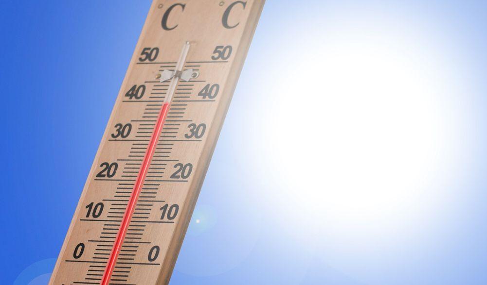 Temperatura exterioară și lumina soarelui pot influența accelerarea metabolismului