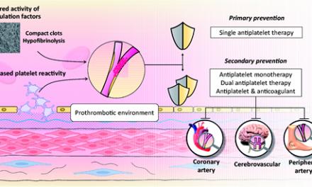 Terapia antitrombotică în diabet