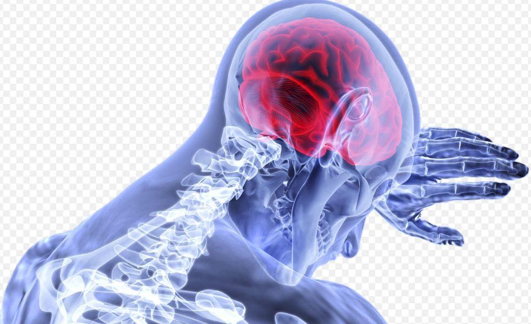 Influența creierului asupra greutății corporale